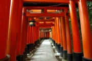 【観光】夜の伏見稲荷神社wwwwwwwww