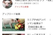 子豚って100日くらいで食べれるの??